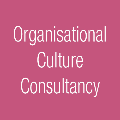 Joanna Nicolas Organisational Culture Consultancy Box New
